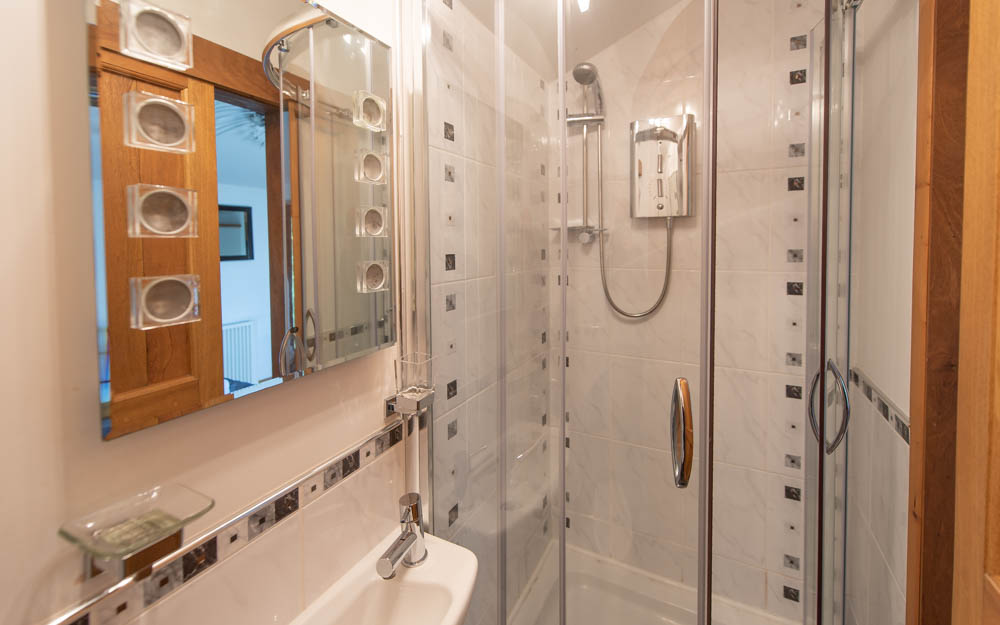 Lower Brentor View Ensuite Shower